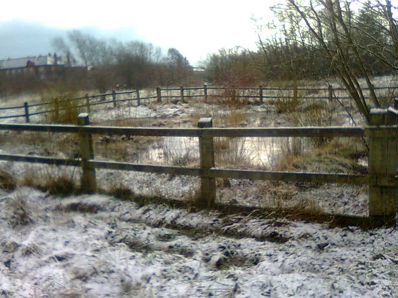 Nutsford Vale in the snow