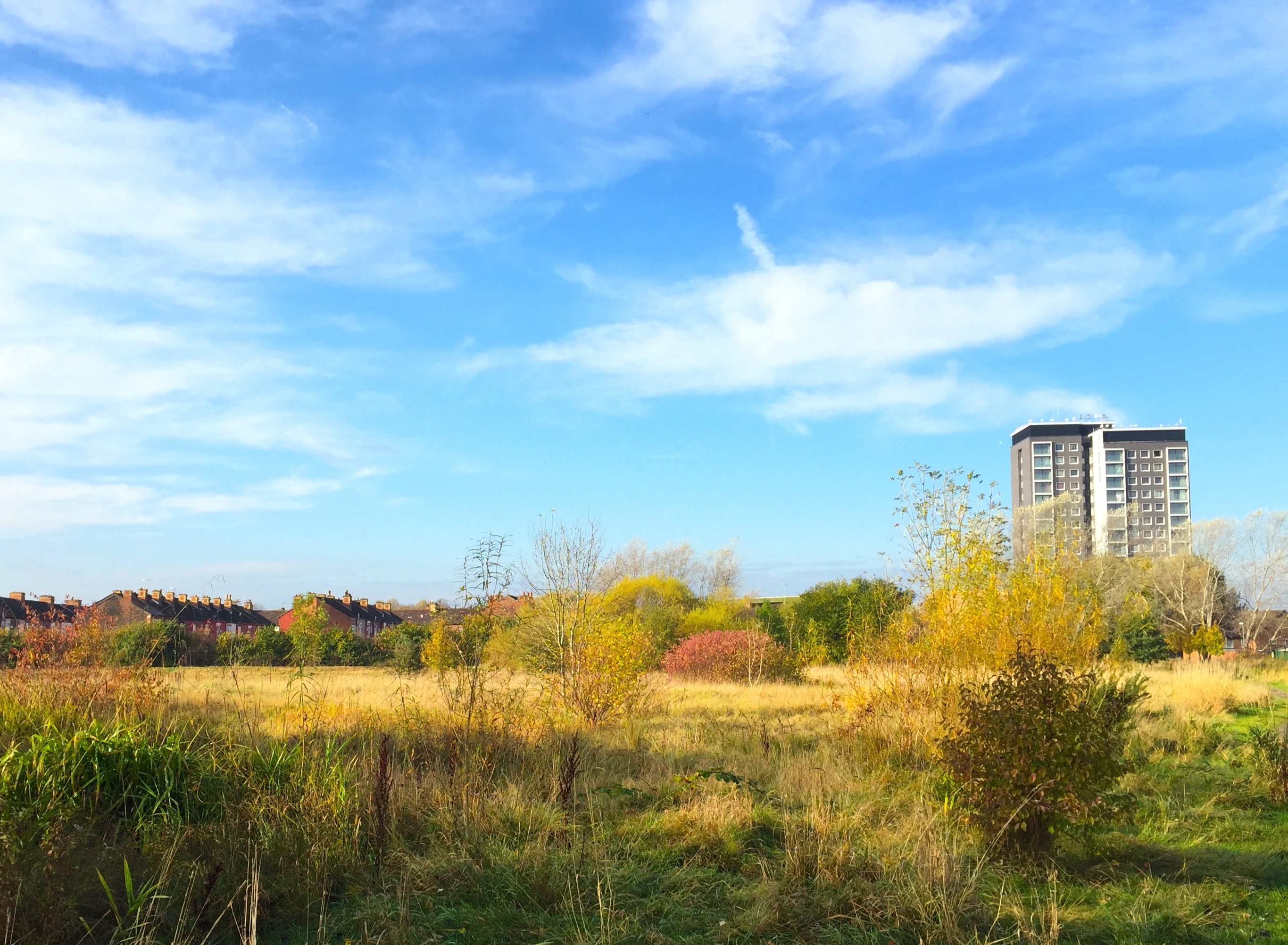 Save Nutsford Vale Country Park